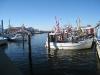 Niendorf Hafen im Winter